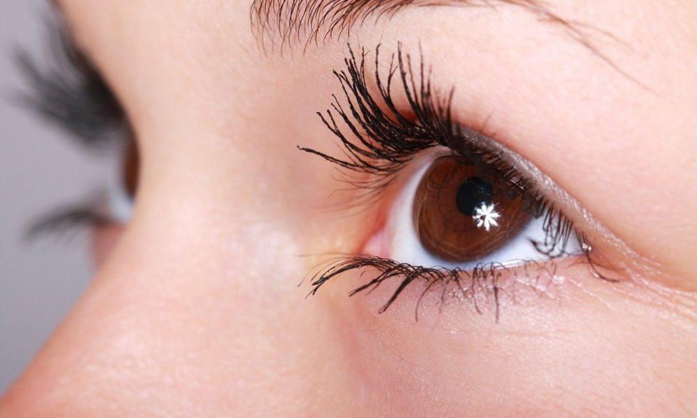Oczy to charakterystyczny organ. To dokładnie dzięki nim widzimy.